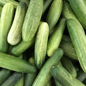 Fresh Organic Cucumber