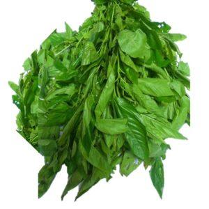 Ewedu leaves