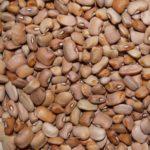 Oloyin Beans