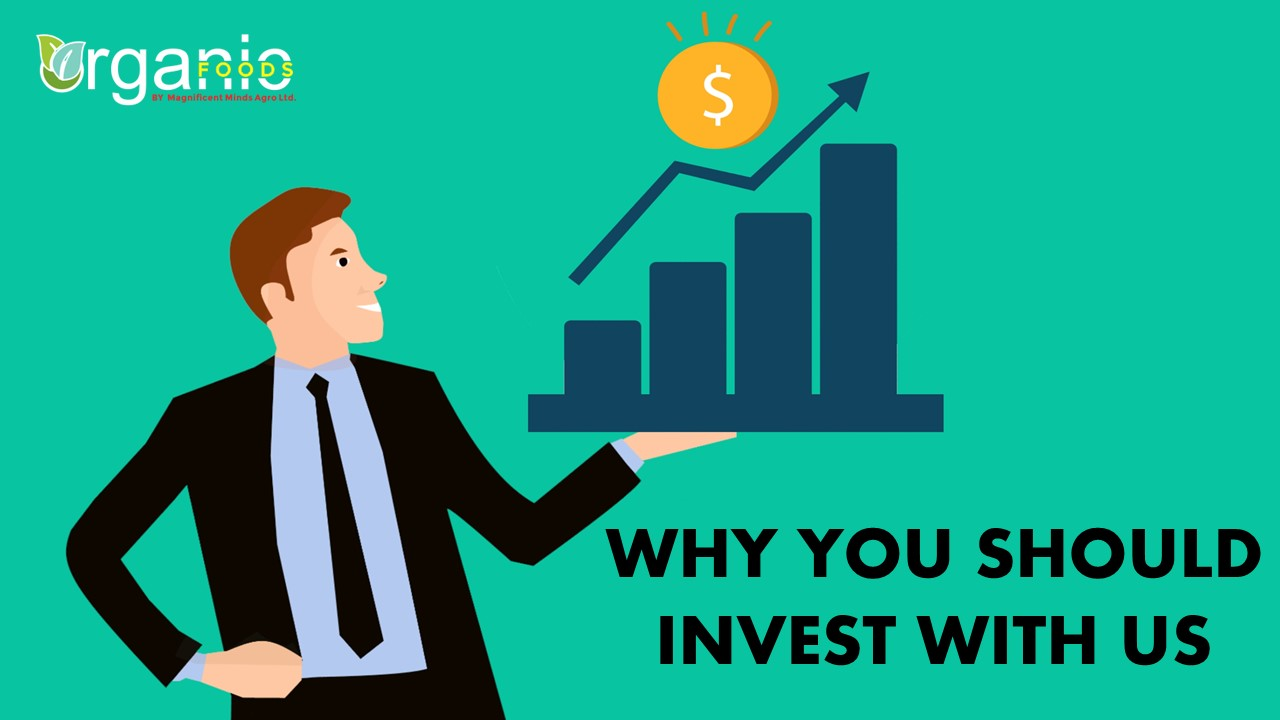 Our Investment Programs and  Why you Should Invest With Us!